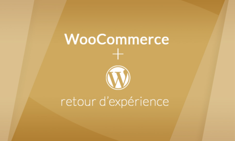 Retour d'expérience : Pourquoi avoir choisi WordPress & WooCommerce ?